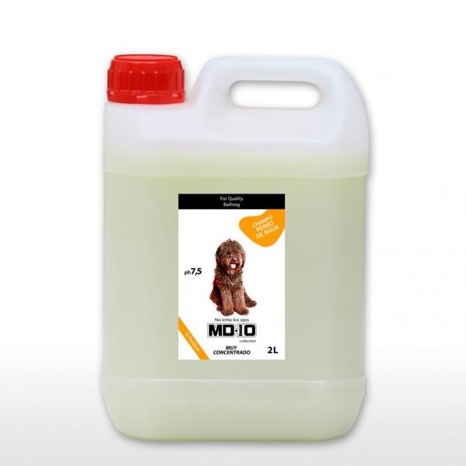 champu-perro-de-agua-espanol-pelo-marron-6